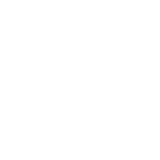 The Nail barre logo